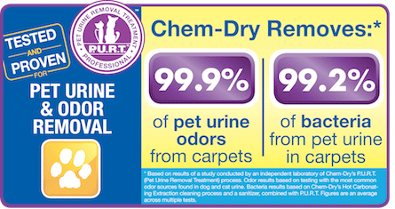 Chem-Dry's Pet Urine & Odor Removal Removes 99.9% of Pet Urine Odor & 99.2% Of Pet Urine Bacteria For A Healthier Home